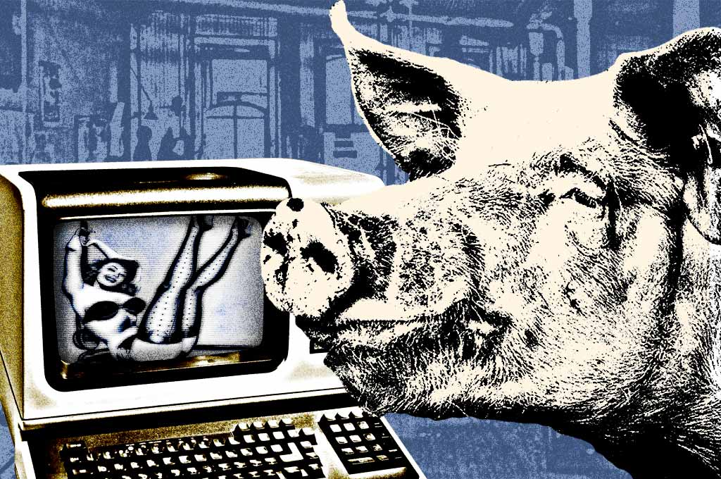 Photo illustration pig newsroom 1970s computer Shelley Page The Sick Days Part 13